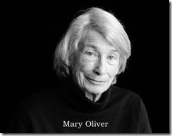 Mary Oliver Midweek #3